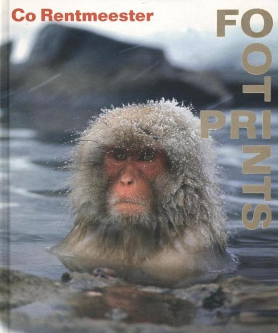 Cover van het boek 'Co Rentmeester'