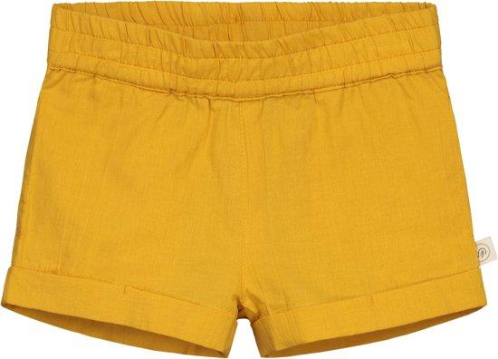 Smitten Organic - Chino Shorts - Sea Anemone Yellow - Maat 92