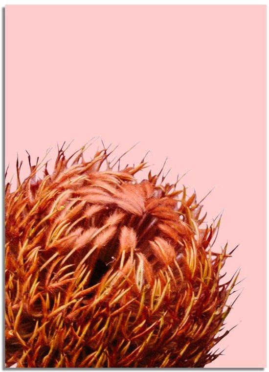 Oranje bloem poster DesignClaud - Bloemstillevens - Rood Oranje – A4 + Fotolijst wit