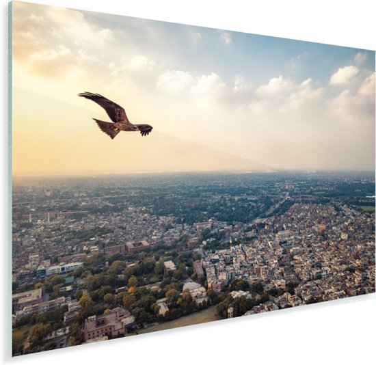 Adelaar vliegt boven Lahore Plexiglas 40x30 cm - klein - Foto print op Glas (Plexiglas wanddecoratie)