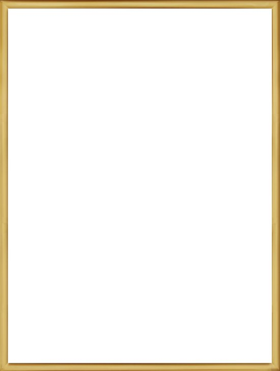 Homedecoration Almelo – Fotolijst – Fotomaat – 20 x 85 cm – Vintage Goud