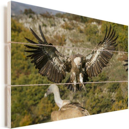 Vale gier met gespreide vleugels Vurenhout met planken 90x60 cm - Foto print op Hout (Wanddecoratie)