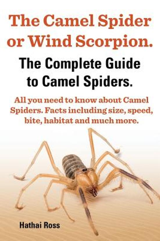 The Camel Spider or Wind Scorpion, The Complete Guide to Camel Spiders.