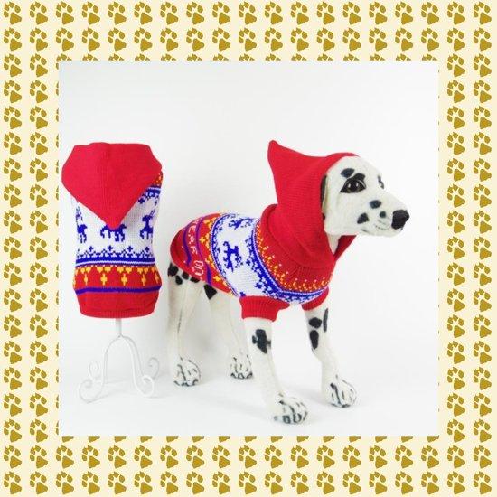 Winter, warme trui met muts voor uw hond