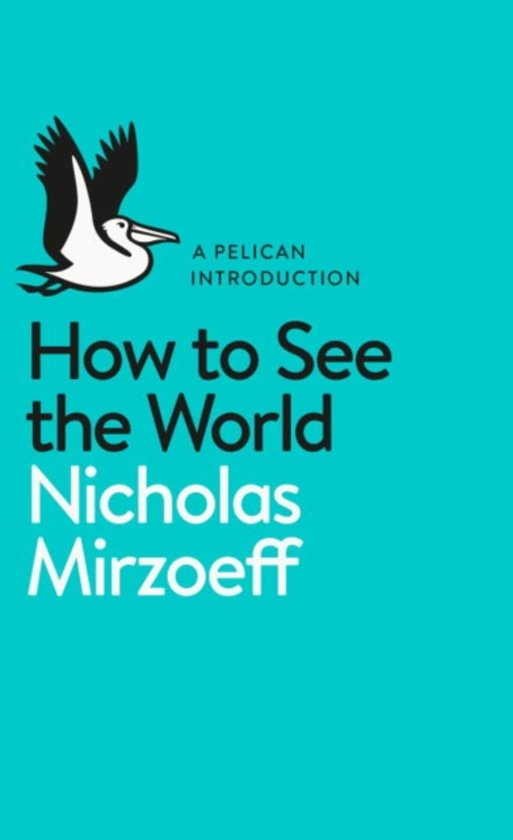 Boek cover How to See the World van Nicholas Mirzoeff (Paperback)
