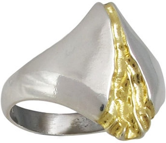 Rivier van goud, Zilveren ring 20mm
