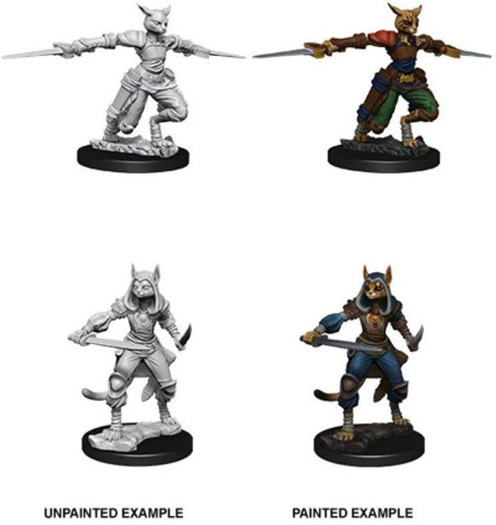 Dungeons and Dragons Nolzur's Marvelous Miniatures:  Tabaxi Rogue, female