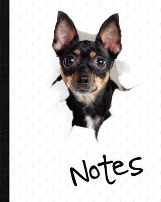 Dog, Notebook, Notes, Journal Jotter
