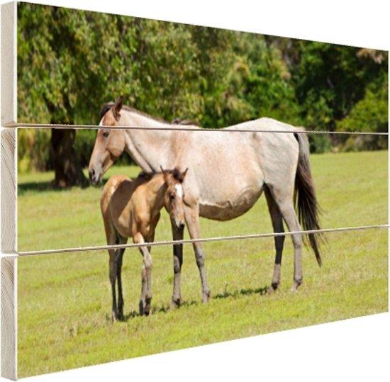 Moeder en veulen Hout 30x20 cm - klein - Foto print op Hout (Wanddecoratie)