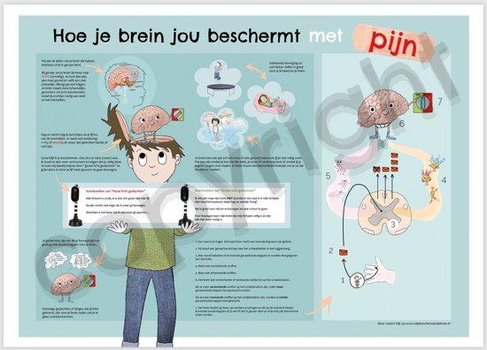 Pijnposter (Hoe je brein je beschermt met pijn)