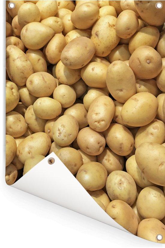 Geschilde aardappelen op een hoop in de laaglanden van Chili Tuinposter 60x90 cm - Tuindoek / Buitencanvas / Schilderijen voor buiten (tuin decoratie)