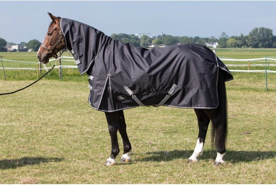 Harry's Horse Regendeken Thor 0gr. met nek Stretch limo 155cm