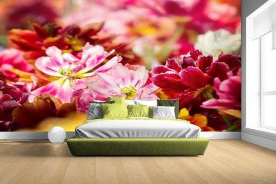 Mutli gekleurde tulpen Fotobehang 380x265