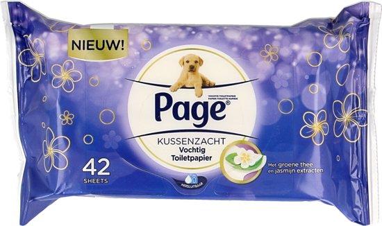 Page Vochtig Toiletpapier.Bol Com Page Vochtig Toiletpapier Kussen Zacht