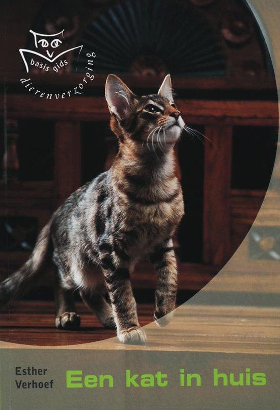 Een Kat In Huis