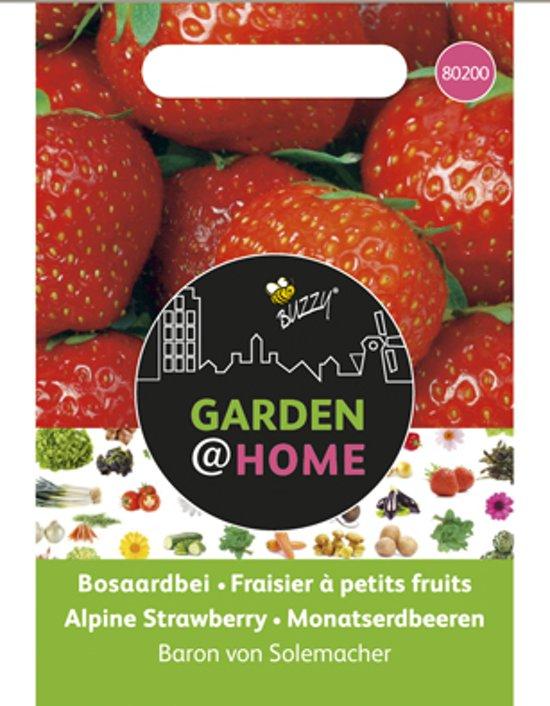 Garden@Home Aardbeien Baron v Solemacher