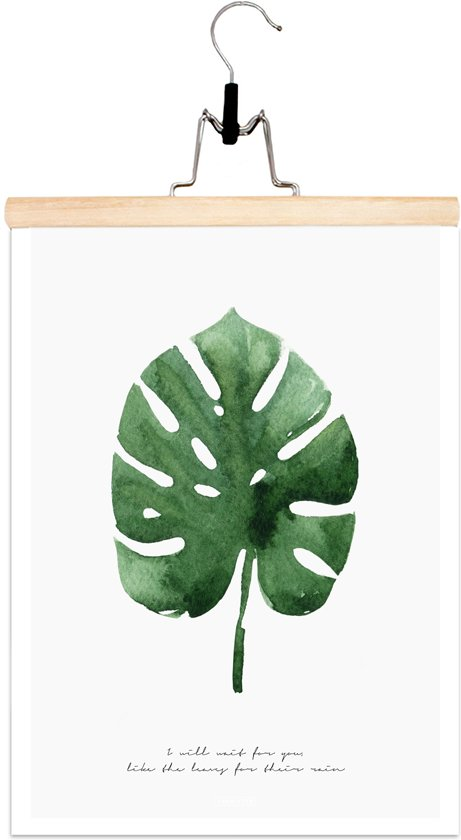 Poster - Print A3 - Botanical - Monstera - Fabrikten