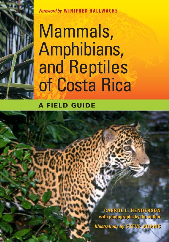 Mammals, Amphibians, and Reptiles of Costa Rica cover