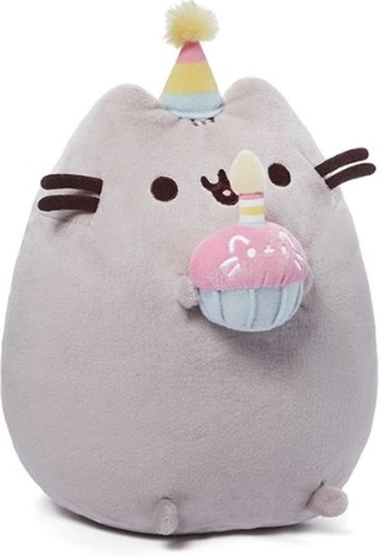 Pusheen Birthday 10.5 H