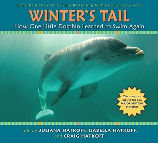 Afbeelding van How One Little Dolphin Learned to Swim Again (Winters Tail)