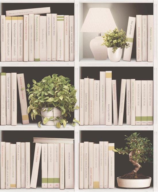 Dutch Wallcoverings vliesbehang boekenkast - beige