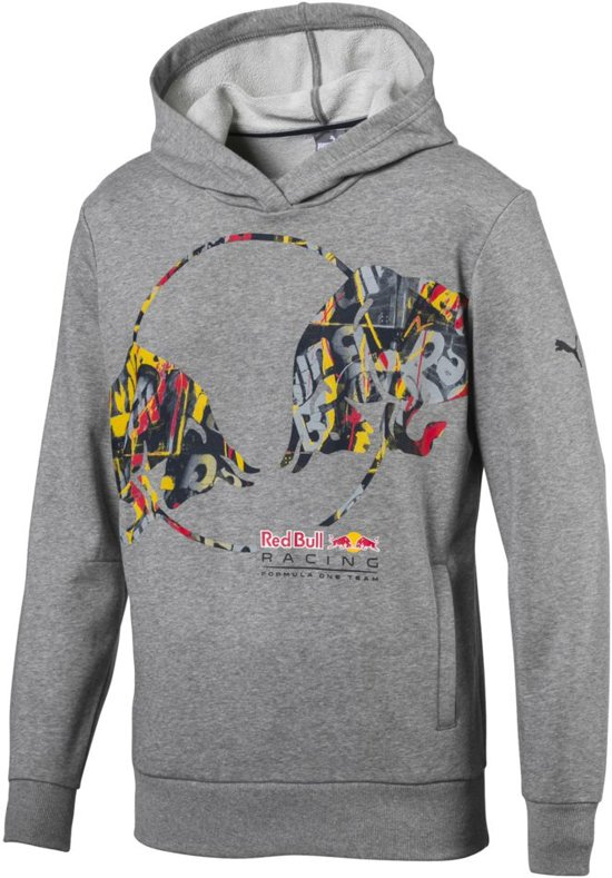PUMA Red Bull Racing Double Bull Hoodie Trui Heren - Medium Gray Heather