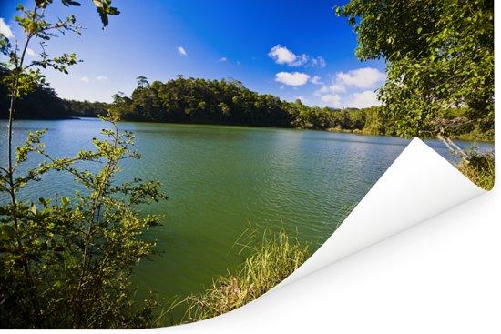 Struikgewas en boslandschap in het Nationaal park Lagunas de Montebello Poster 30x20 cm - klein - Foto print op Poster (wanddecoratie woonkamer / slaapkamer)