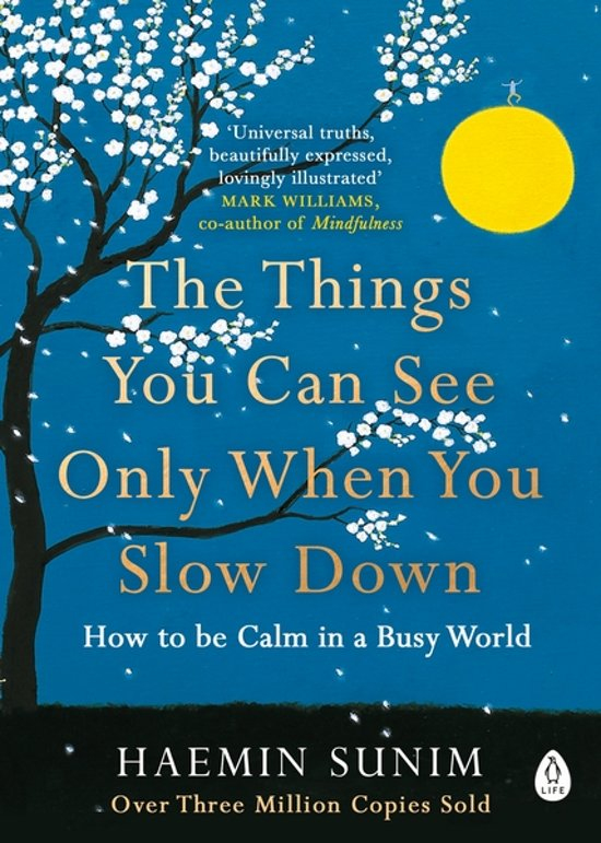 Boek cover Things you can see only when you slow down van Haemin Sunim (Paperback)