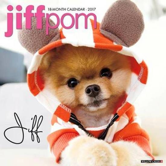 Jiffpom Tot
