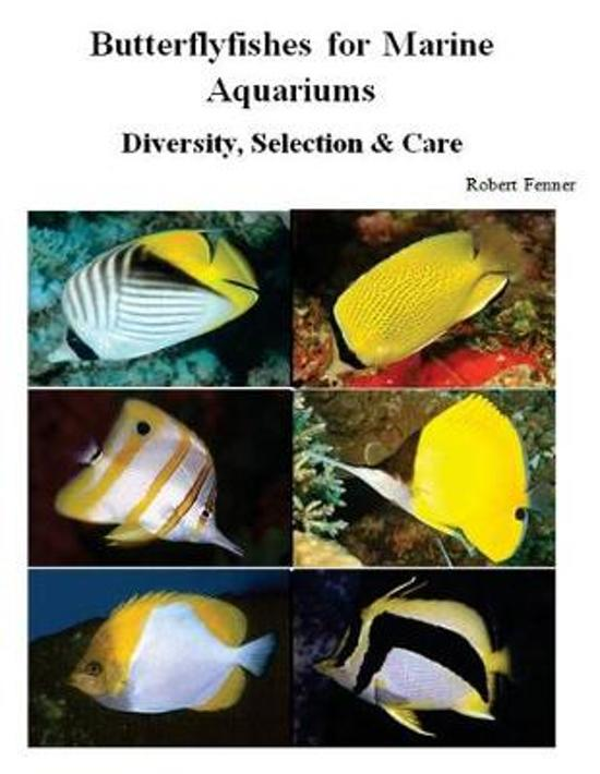 Butterflyfishes for Marine Aquariums