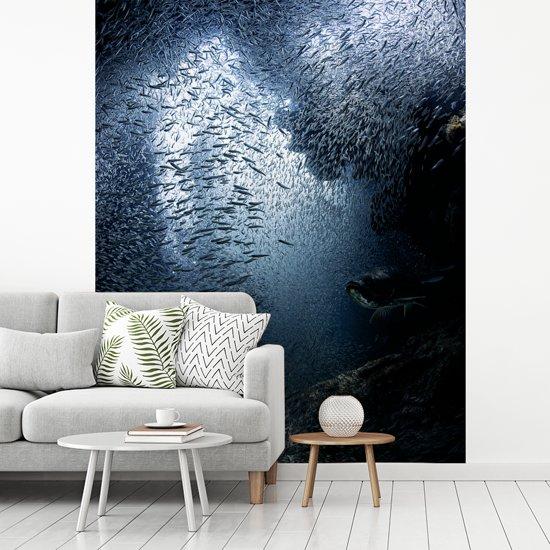 Fotobehang vinyl - Duiker wordt in de grotten bij Grand Cayman ondergedompeld door vissen breedte 400 cm x hoogte 500 cm - Foto print op behang (in 7 formaten beschikbaar)
