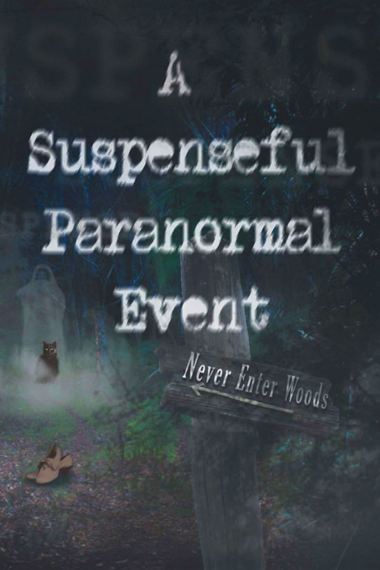 A Suspenseful Paranormal Event