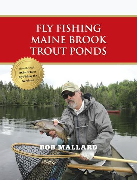 Fly fishing maine brook trout ponds ebook for Trout fishing near me