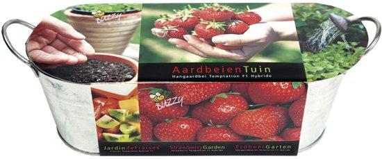 Buzzy® Zinken Teiltje Strawberry Garden