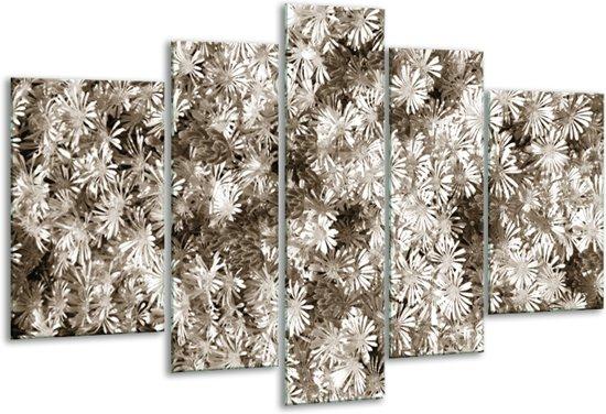 Glas schilderij Bloemen | Sepia | 170x100cm 5Luik | Foto print op Glas |  F006744