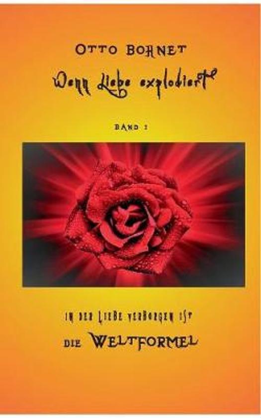 Wenn Liebe Explodiert, Band 1