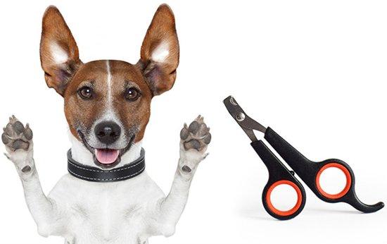 Noix Dieren Nagelschaar - Nagelschaartje - Nagelknipper - Geschikt voor Hond Kat Konijn Cavia Vogel