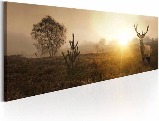 Schilderij - Hert in de Ochtend  , beige bruin