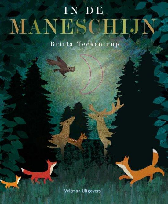 Boek cover In de maneschijn van Britta Teckentrup (Hardcover)