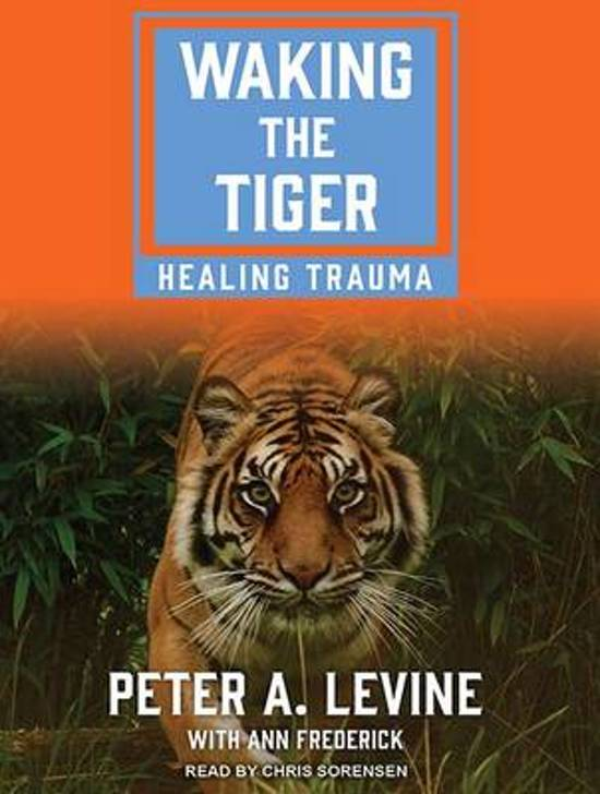 Boek cover Waking the Tiger van Ann Frederick (Onbekend)