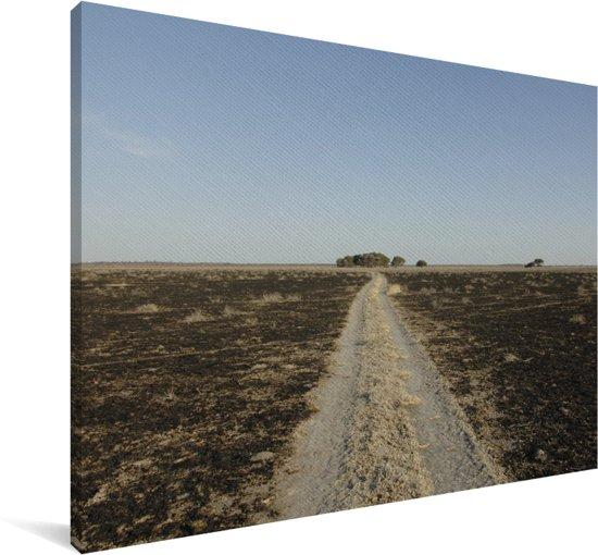 Dorre vlakte in het Wildreservaat Central Kalahari in Afrika Canvas 140x90 cm - Foto print op Canvas schilderij (Wanddecoratie woonkamer / slaapkamer)