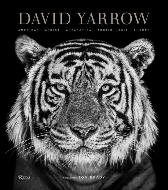 Boek cover David Yarrow Photography van David Yarrow (Hardcover)