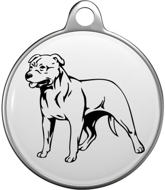 American Pit Bull  Tommy Tag A018