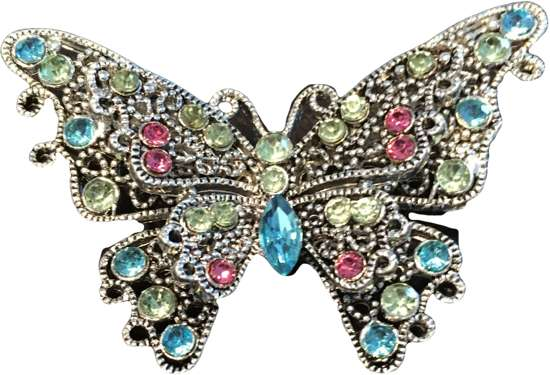 Broche vlinder gekleurd