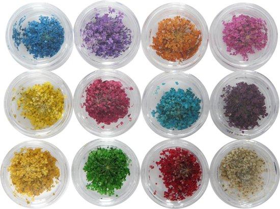 Veronica Nail Products 12x Nailart Bloemen In 12 Art Potjes Verschillende Kleuren