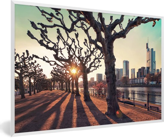 Foto in lijst - Zonsondergang tussen de bomen in Frankfurt am Main fotolijst wit 60x40 cm - Poster in lijst (Wanddecoratie woonkamer / slaapkamer)