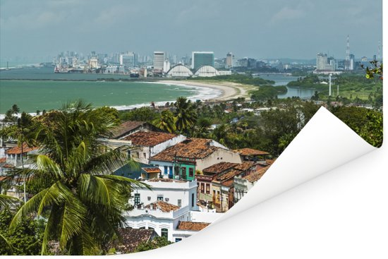 Tropische Braziliaanse begroeiing van Recife Poster 60x40 cm - Foto print op Poster (wanddecoratie woonkamer / slaapkamer)