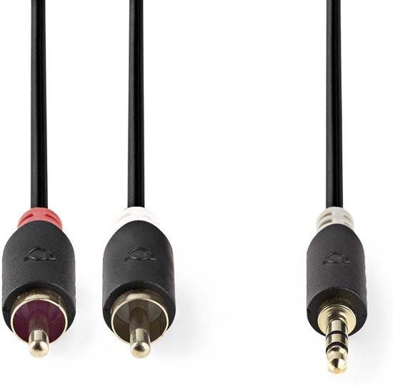 Nedis 3,5 mm naar RCA Kabel 5 Meter Grijs