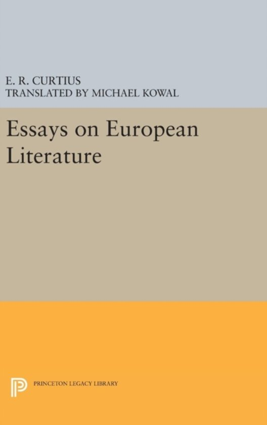 european literature essay