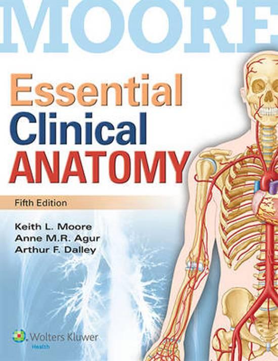 bol.com | Essential Clinical Anatomy | 9781451187496 | Moore | Boeken